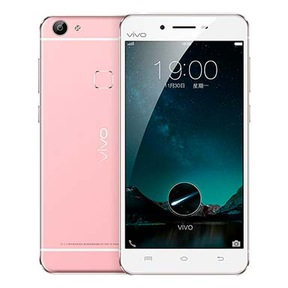 Vivo X6 Plus (4 GB/64 GB)